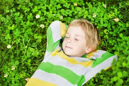 Dagcursus Executieve functies en de rol van rust